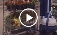 Carros de plantas
